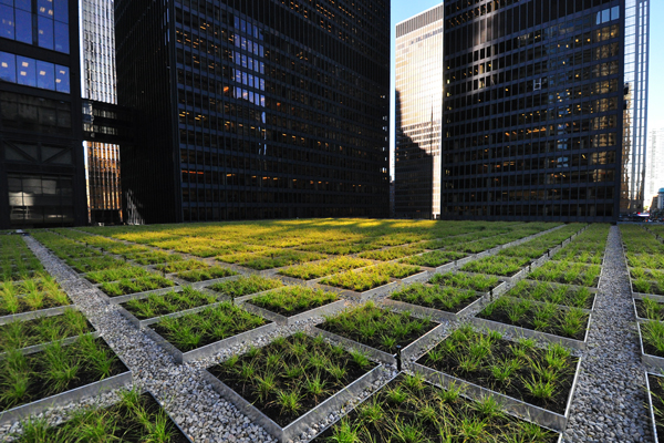 TD Living Roof – green reason