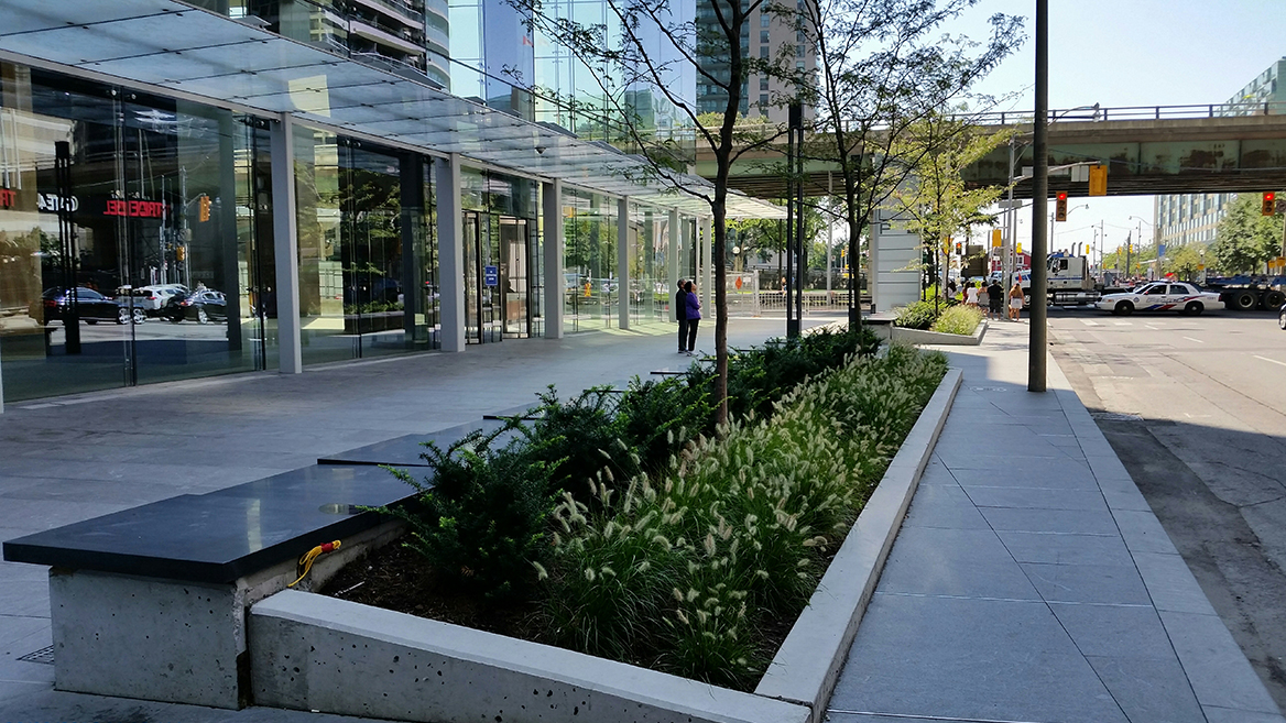 Landscaping at One York St